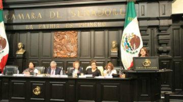 En defensa de la Constitución CDMX