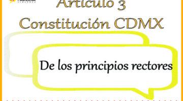 Artículo 3 – De los principios rectores