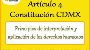Artículo 4 – Principios de interpretación y aplicación de los derechos humanos