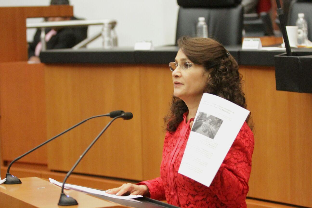 Dolores Padierna Luna en la Comisión Permanente.